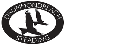 Drummondreach Branding